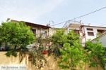 Avlonari | Evia Griekenland | De Griekse Gids - foto 009