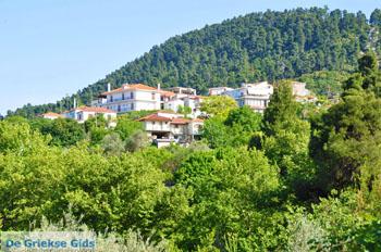 Ellinika Noord-Evia | Griekenland | De Griekse Gids foto 1