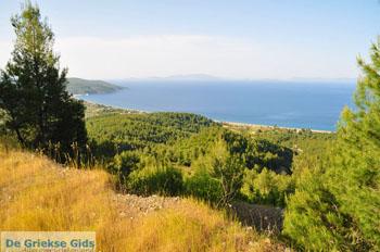 Noordoostkust Evia   Griekenland   Foto 1