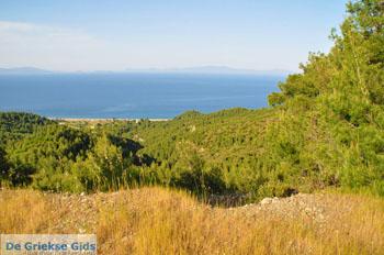 Noordoostkust Evia | Griekenland | Foto 3